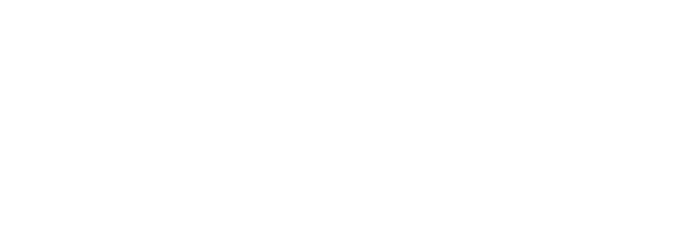 The Construction Consultants
